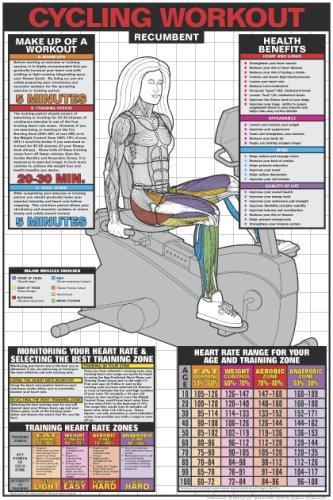 Recumbent Cycling Workout 24'' X 36'' Laminated Chart