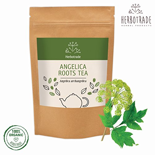 Angelica roots (Angelica archangelica) dried herb tea (loose) 3 oz / 90gr