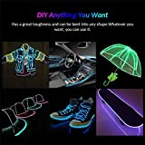 EL Wire Lights, 9.8ft Foldable Interior Neon String Glow Strobing Wire Strip Light with USB Charger for Car, Christmas Party DIY