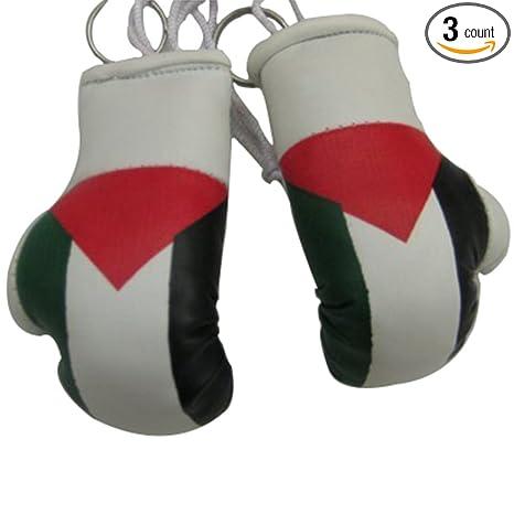 Amazon.com: Mini Small – Guantes de boxeo de Palestina 3 ...