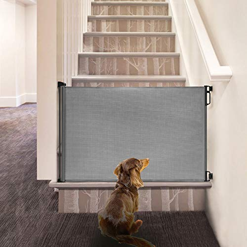 "51mSty5eb L - EasyBaby Products Indoor Outdoor Retractable Baby Gate, 33"" Tall, Extends Up To 55"" Wide, Grey"