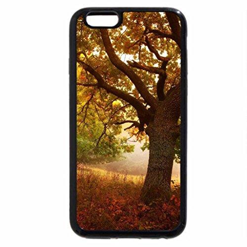 iPhone 6S Case, iPhone 6 Case (Black & White) - Meditation of Autumn