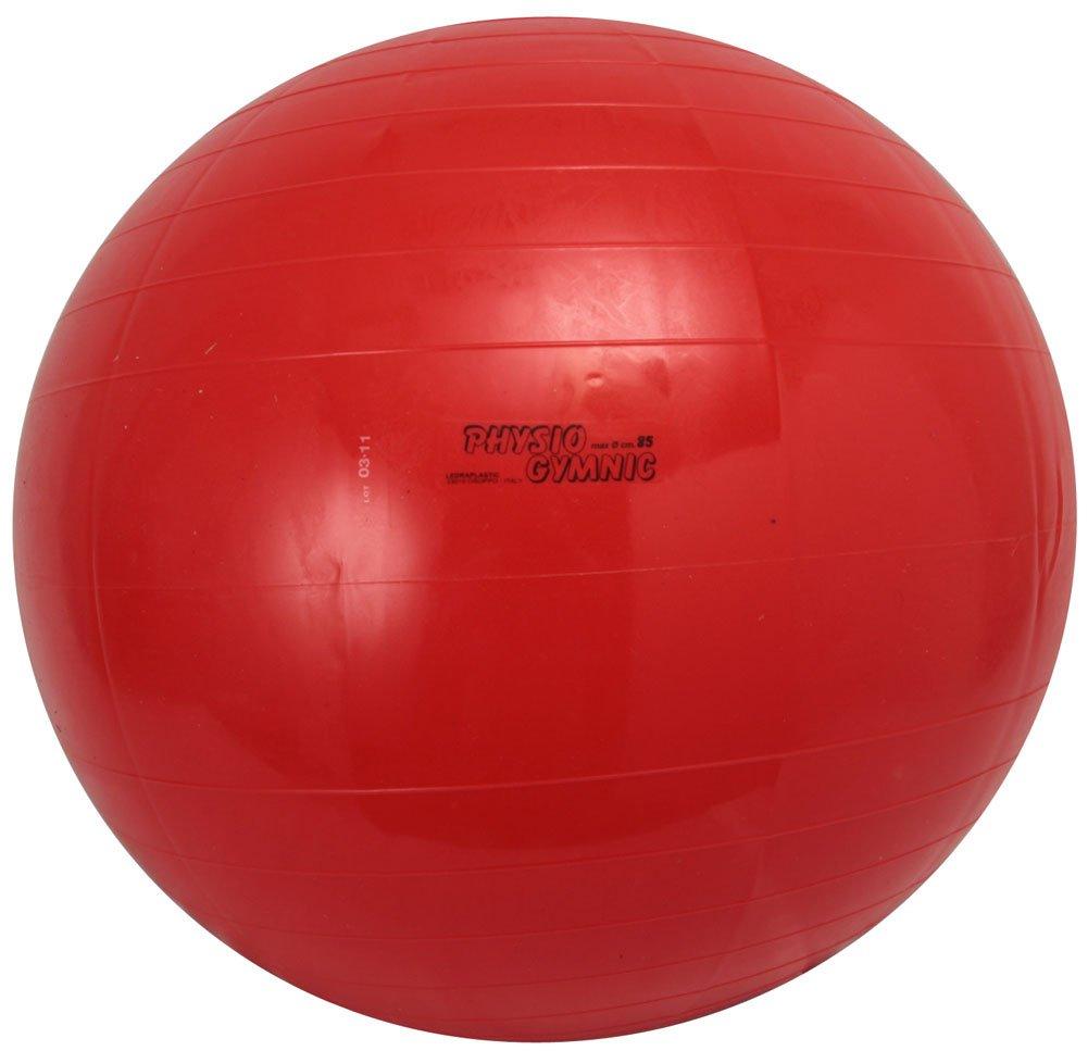 【大特価!!】 ダンノ(DANNO) ダンノ(DANNO) バランスボール ギムニクカラーボール B000ARSI2U レッド(85cm) B000ARSI2U レッド(85cm), へんじんもっこ:4d185175 --- arianechie.dominiotemporario.com