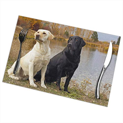 Affany Placemats for Dining Table, Heat Insulation Stain Resistant Table Mat Set of 6 Non Slip Washable Tray Mat Durable Place Mats for Kitchen Dining Room Table Decoration - Labrador Dogs -