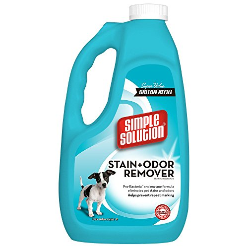Feces Stain Removal - Simple Solution Pet Stain and Odor Remover with Pro-Bacteria and Enzyme Formula, Made in USA