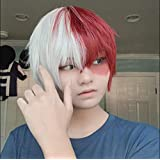 Short Cosplay Wigs Todoroki Wig Anime Heat Resistant Synthetic for Halloween Half White Half Red