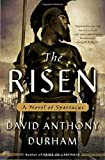 the risen a novel of spartacus