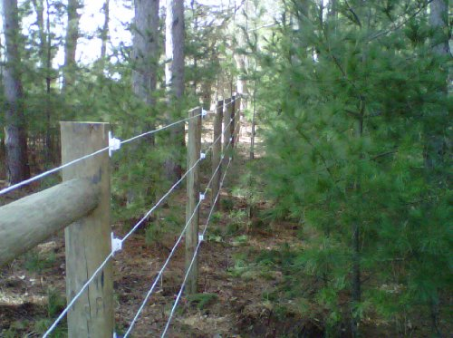 Bayco Finish Line Durable Horse Fence 2000 Foot Roll