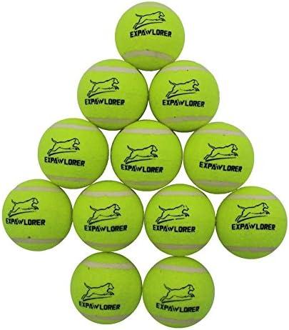 NEW MULTIPACK 10 TENNIS BALLS IN FANTASTIC ZIP PLASTIC BAG SET