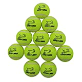 EXPAWLORER Dog Squeaky Tennis Balls for Dogs Set of 12 for Pet Playing and Training 2.5'