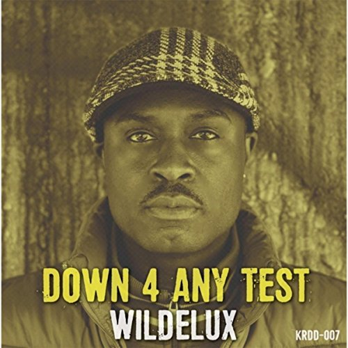 Down 4 Any Test (feat. Lafayette Ave & Adlib Swayze) Any Four