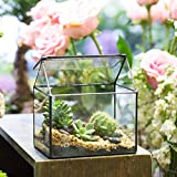 Handmade House Shape Close Glass Geometric Terrariumn Box Tabletop Diy Display Planter Windowsill Flowerpot with Swing for Succulent Air Plants Moss Fern Lid Reptile 6.2x 5.9x 4.3inches