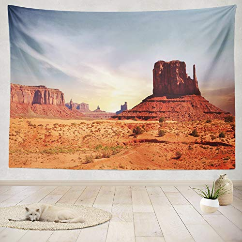 (ASOCO Tapestry Wall Handing Valley Utah West Colorado USA Border Butterfly Colorado Desert Desert Wall Tapestry for Bedroom Living Room Tablecloth Dorm 60X80 Inches)