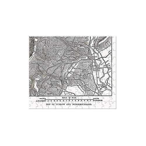 Media Storehouse 252 Piece Puzzle of Map of Ludlow, England Victorian Engraving, Circa 1840 ()