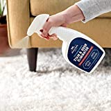 Rocco & Roxie Professional Strength Stain & Odor Eliminator - Enzyme-Powered Pet Odor & Stain Remover for Dog and Cats Urine (1 Gallon)