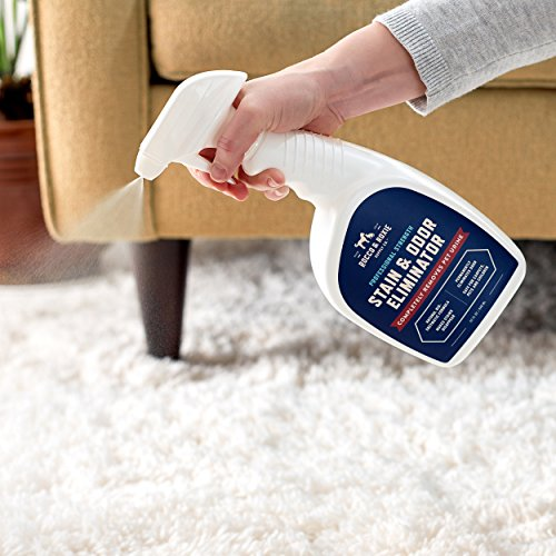 Large Product Image of Rocco & Roxie Supply Co Professional Strength Stain & Odor Eliminator - Enzyme-Powered Pet Odor & Stain Remover for Dogs and Cat Urine - Spot Carpet Cleaner - Small Animal Odor Remover (32 oz)