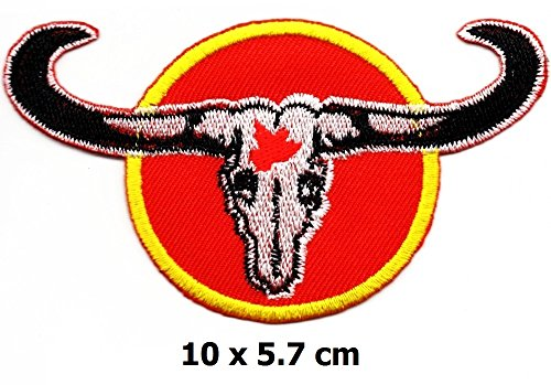 Extreme Sports Appliques (Bull Buffalo Bison Sports extreme sports Iron on Logo Vest Jacket cap Hoodie Backpack Patch Iron On/sew on patch)