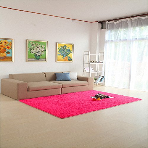 The Philadelphia Story Costumes (HANYUN Super Soft Modern Living Room Bedroom Anti-skid Shag Area Rug Carpet 4-Feet By 5-Feet / 120cm 160cm (Rose))