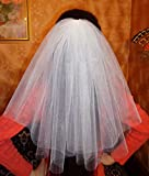 White Bachelorette party Veil 2-tier, middle length. Bride veil, accessory, bachelorette veil, wedding veil, hens party veil