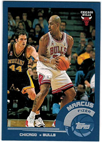77356bf3ef85 Amazon.com  2002-03 Topps Chicago Bulls Team Set with Jalen Rose   Tyson  Chandler - 7 NBA Cards  Collectibles   Fine Art