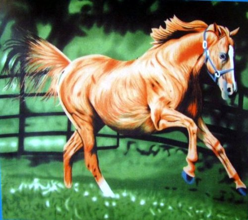 Running Horse Polar Fleece Throw Blanket 50x60