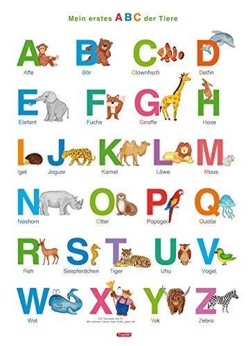 Price comparison product image Fragenbär-Lernposter: Mein erstes ABC der Tiere,  M 50 x 70 cm: Gerollt,  matt folienbeschichtet,  abwischbar