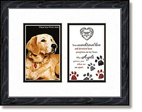 Amazoncom Guardian Angel Protect My Pet Photo Frame Dog