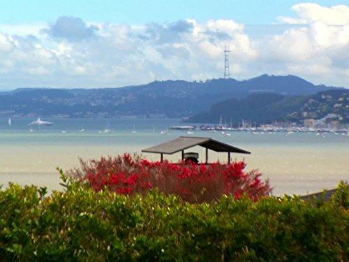 Paradise in the Bay Area (Dollar Million Hgtv)
