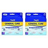 API Powder General Cure 20ct (2 Boxes with 10 Each)
