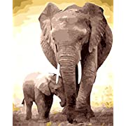 Rihe Diy Oil Painting Paint by Number Kit - Elephant 16x20 inch with Brushes and Acrylic Pigment (Frameless)