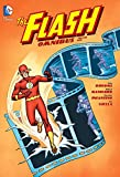 img - for The Flash Omnibus Vol. 1 book / textbook / text book