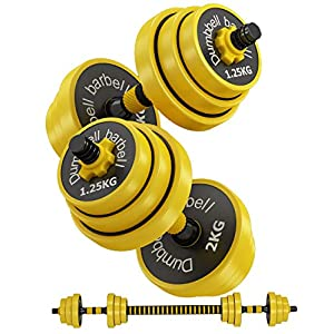 Well-Being-Matters 51mTqsvPKML._SS300_ AJAYR Adjustable Weight Dumbbells Set with Connector,Dumbbell Barbell 2 in 1,44 Lb