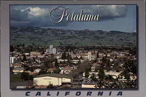 Petaluma, Sonoma County, California Petaluma Original Vintage Postcard
