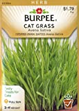 Burpee 54297 Herb Cat Grass Seed Packet