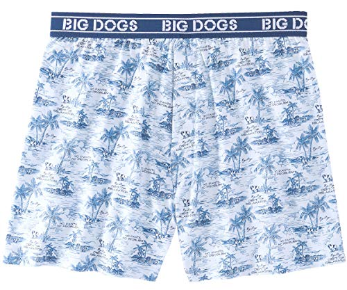 (Big Dogs Dept. of Relaxation Printed Knit Boxers 2X Chambray)