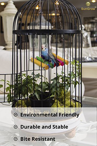 Image of SunGrow Colorful, Environmentally Friendly Pet Bird Swing - Durable, Bite Resistant Play Toy - Perfect for Training or Entertaining Your Parakeet, Finch, Canary or Small Parrot