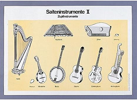 explicativo sobre el instrumento cliente, Instrumentos de cuerda ...