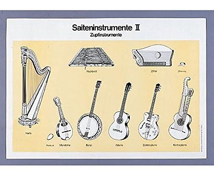 explicativo sobre el instrumento cliente, Instrumentos de cuerda, 70 x 100 cm, cartón