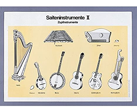 ... sobre el instrumento cliente, Instrumentos de cuerda, 70 x 100 cm, cartón Póster con nombres y piezas de designar: Amazon.es: Instrumentos musicales