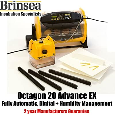 Octagon 20 ADVANCE EX digital egg incubator