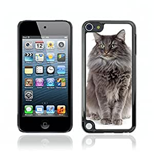 Carcasa Funda Case // V0000933 Cat Kitty Animal Pattern // Apple Ipod Touch 5 5G 5th