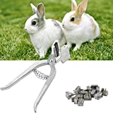 Animal Tattoo Kit Rabbit Use Pets Management Tools