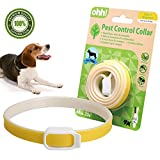 FOOMEXT Flea and Tick Collar for Cats and Dogs Natural Botanic Essential Oil Protection Collar Lasting Up to 60 days Waterproof and Adjustable (Yellow)