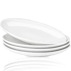 Delling 10-inch Perdurable White Dinner Plates Set of 4