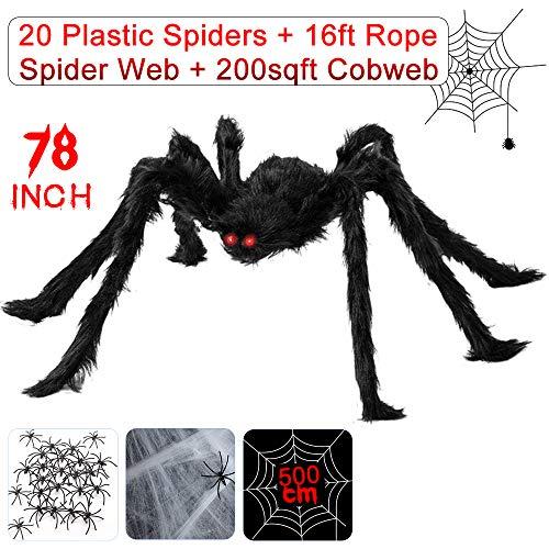 Gute Spinne