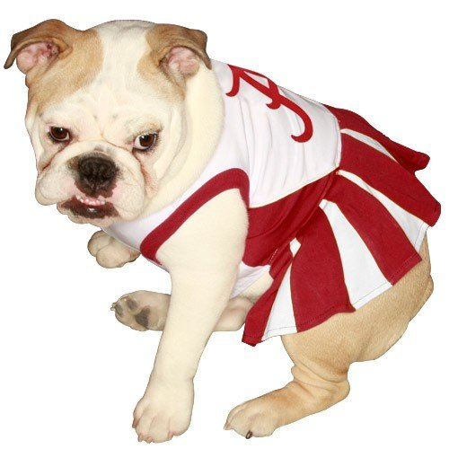 Pets First NCAA University of Alabama Crimson Tide Cheerleader Dog Outfit, Small, My Pet Supplies