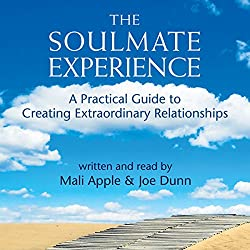 The Soulmate Experience