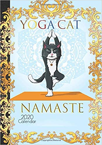 Amazon.com: Yoga Cat Calendar 2020: Cute Stretching Cat Yoga ...