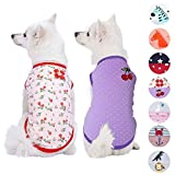 Blueberry Pet Pack of 2 Soft & Comfy Summer Hope Floral Cotton Blend Dog T Shirts Tank Top, Back Length 14'', Clothes for Dogs