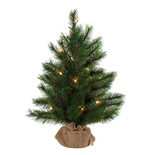 Kurt Adler 2-Foot Pre-Lit Highland Tree